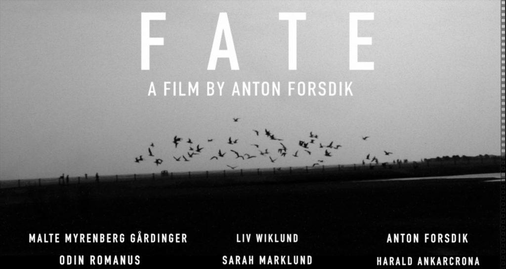 FATE film poster